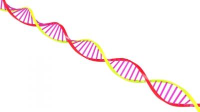 genes_400_225