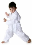 Karate for tots