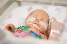 Future Vaccination against Premature Birth: Study